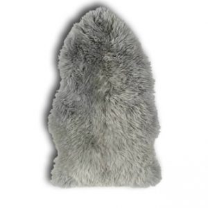Schaap Longwool Grey